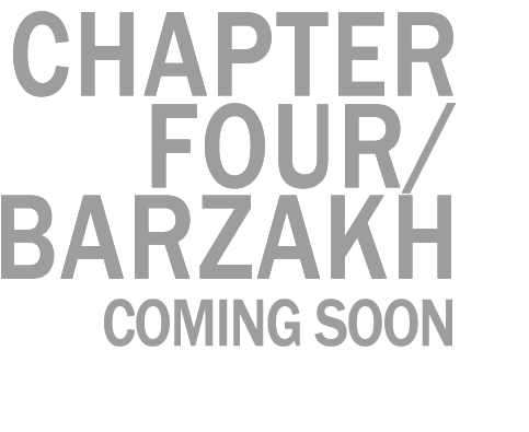 Waldorf Project Chapter Four / BARZAKH