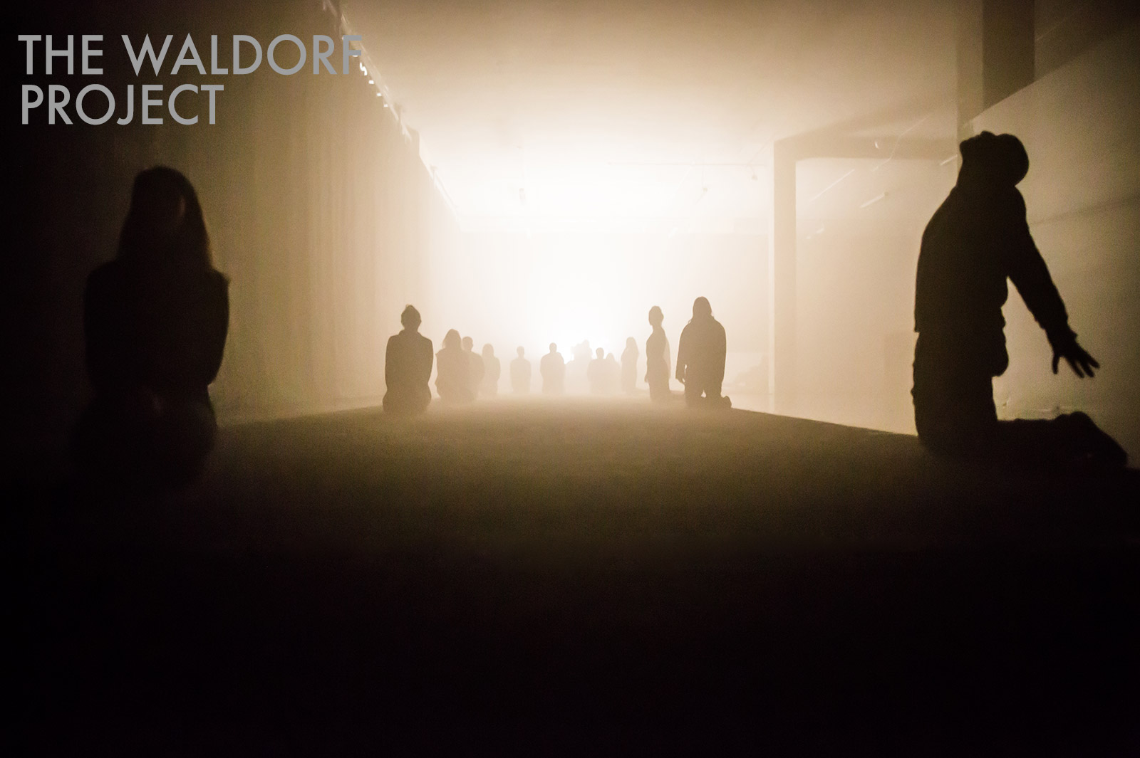 Waldorf Project Chapter Three / FUTURO